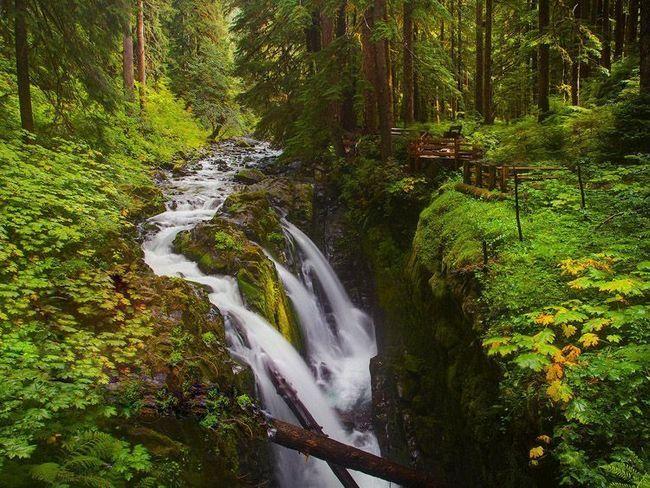 Водоспад Сол Дюк в Національному парку Олімпік.