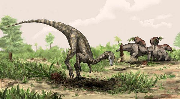 Nyasasaurus (зображення Natural History Museum, London / Mark Witton).