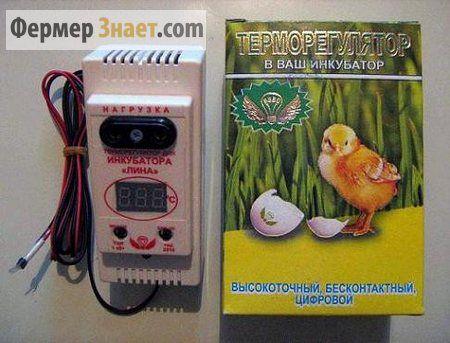 Огляд терморегуляторів для інкубатора