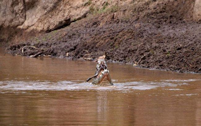 Небезпечна переправа через річку Мара