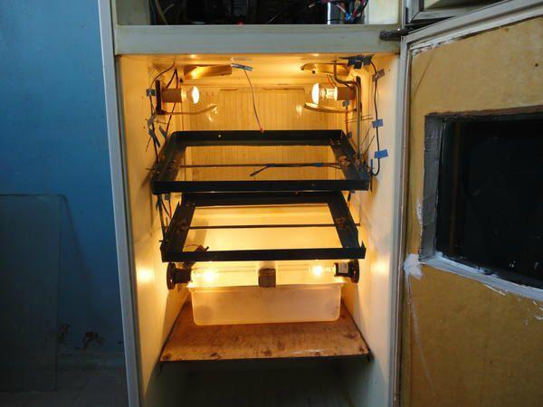 Інкубатор автомат, зроблений своїми руками