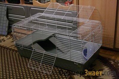 Зручна клітина для кроликів