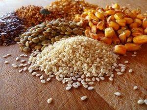 Корм можна приготувати, змішавши пшеницю, кукурудзу, ячмінь, м`ясо-кісткове борошно, шрот соняшнику, кормові дріжджі і трав`яне борошно