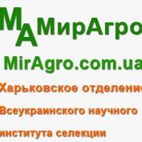 Відгук співпраці з мірагро