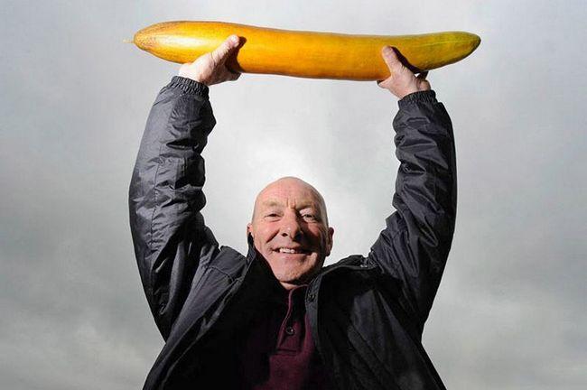 Овочі-гіганти