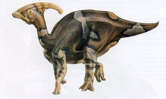 Паразауролофус (лат. Parasaurolophus)