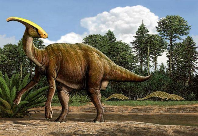 Паразауролофуси поступалися в засобах захисту іншим динозаврам.