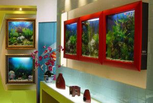 Плоскі акваріуми