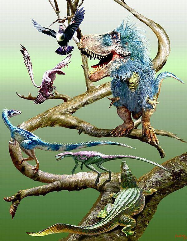 Еволюційне древо динозаврів і птахів (зображення Luis Rey).
