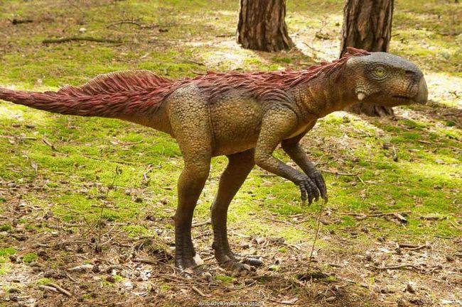 Останки і яйця пситтакозавров виявлені в будинку на території однієї з провінцій Китаю.