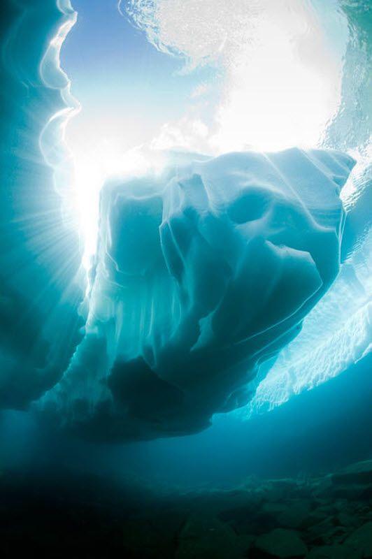 Підводний світ швейцарського альпійського озера