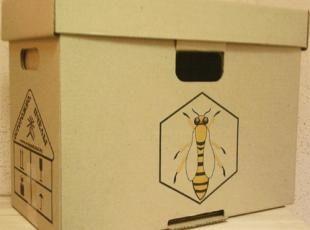 Купівля бджіл, все про неї