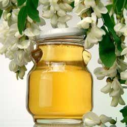 Корисні і лікувальні властивості акацієвого меду, опис
