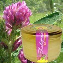 Корисні властивості конюшини меду, протипоказання до застосування