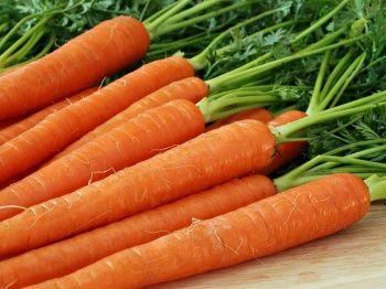Посів, вирощування і збереження моркви