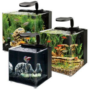 Правильний догляд за акваріумом
