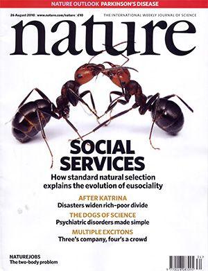 Запропоновано новий погляд на походження суспільного способу життя у тварин