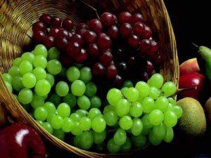 Прищеплюємо виноград восени