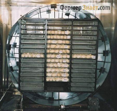 Лотковий блок інкубаторів ИНКИ