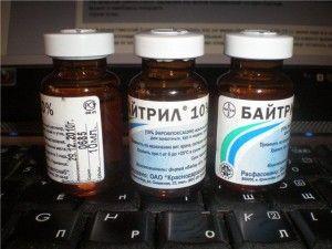Препарат Байтрил для лікування колібактеріозу