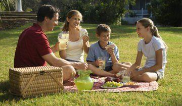 Пікнік на газоні біля будинку, rbt.ru