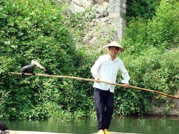 Рибна ловля за допомогою птахів
