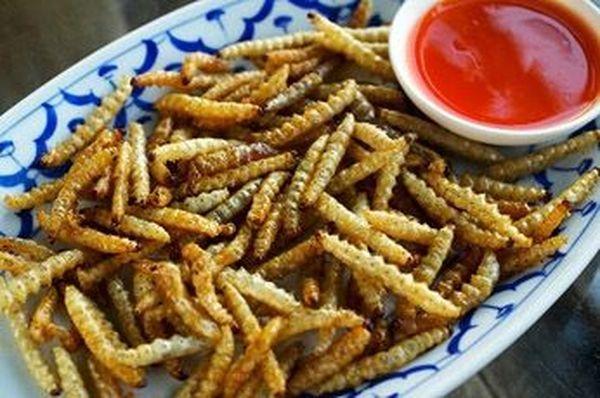 Найпопулярніші і незвичайні страви з комах