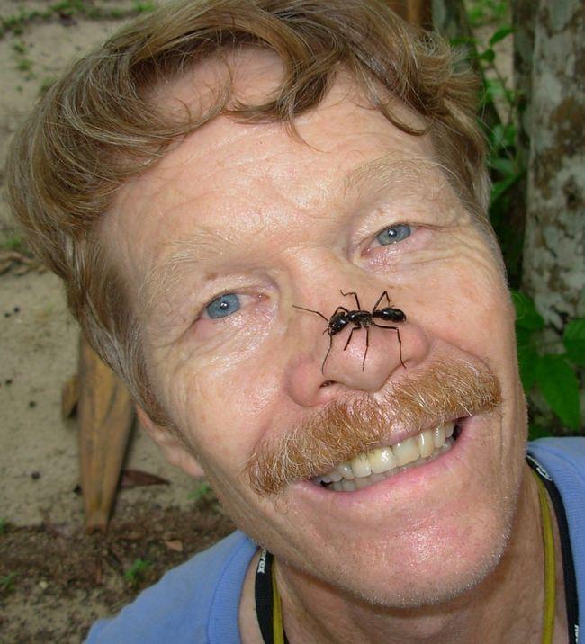 Найстрашніші укуси комах за версією людини, що зазнав їх на собі