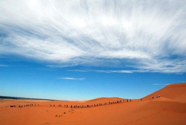 Довга лінія учасників стартує на 24-ом Піщаному марафоні в Сахарі 30 березня 2009 року, піднімаючись по першій піщаній дюні Мерзуга в 300 км від Кварзазате в Марокко. Марафон розпочався на день пізніше через сильну зливу за тиждень до цього. Перше коло скасували, і маршрут був змінений. (AFP / Getty Images / Pierre Verdy)