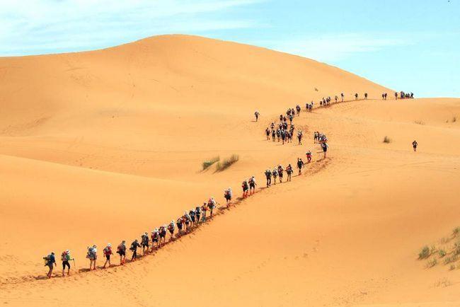 Довга низка учасників стартує на 24-ом Піщаному марафоні в Сахарі 30 березня 2009 року. (AFP / Getty Images / Pierre Verdy)