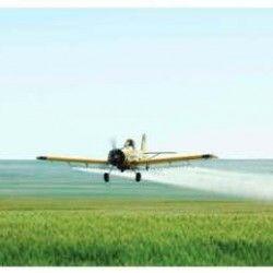 Суміші на озимій пшениці - авіаційним способом