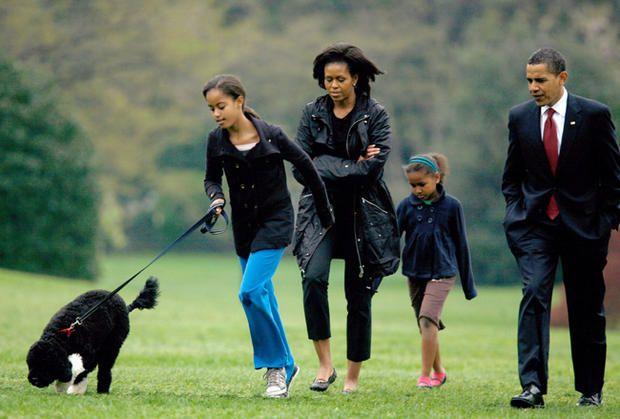 Кажуть, що прізвисько Бо їй дали тому, що у кого-то з родичів Обами є кішка, яку звуть так само.