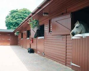 Зміст коней. Стайня. Будівництво стайні. Фото стайні.