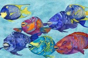 Зміст риб-папуг