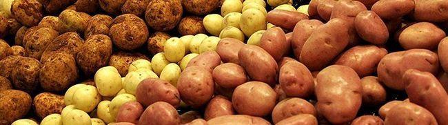 Чи містить картопля корисні властивості, і які протипоказання він має?