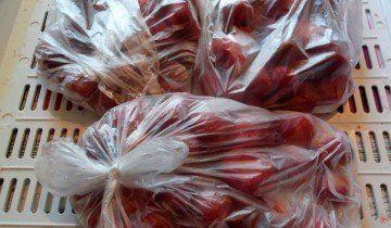 Підготовка полуниці до заморожування, susna.ru
