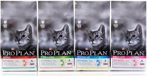 Сухий корм для кішок проплав (pro-plan) - відгук за результатами годування трьох кішок