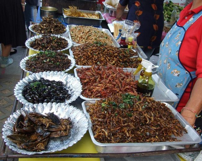 В азіатських країнах з тарганами не борються - їх вживають в їжу в різному вигляді.