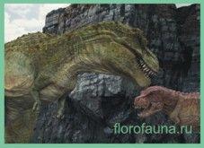 Тарбозавр / tarbosaur