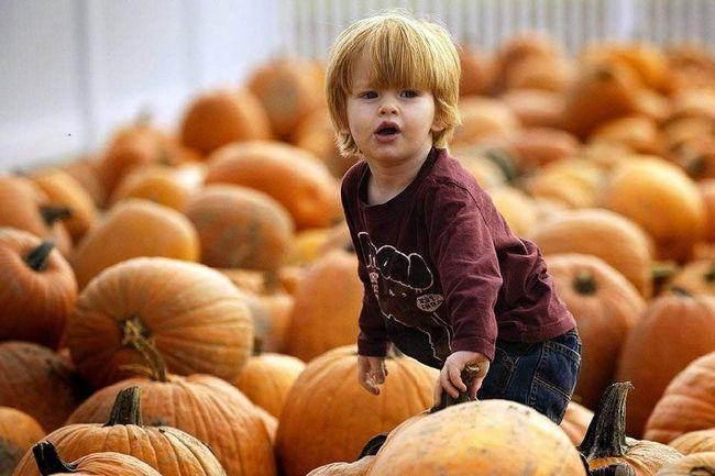 Хлопчик пробирається через гарбуза на гарбузової фермі 22 жовтня в Істоні, штат Меріленд. (Jim Watson, AFP / Getty Images)
