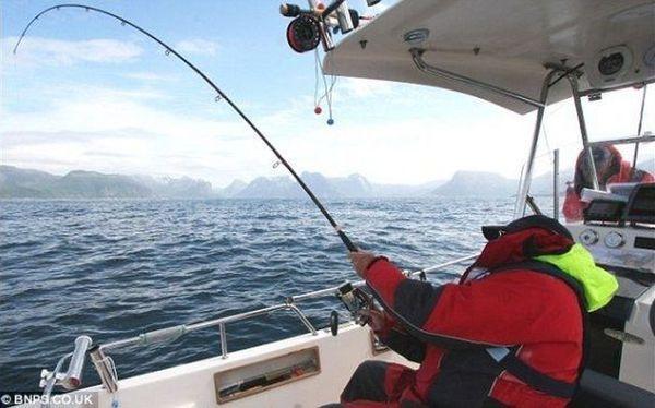 Біля берегів північної Норвегії спіймали атлантичного палтуса вагою 241 кілограм