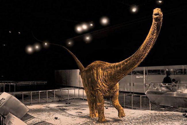 Палеонтологи знайшли найдовшого динозавра.