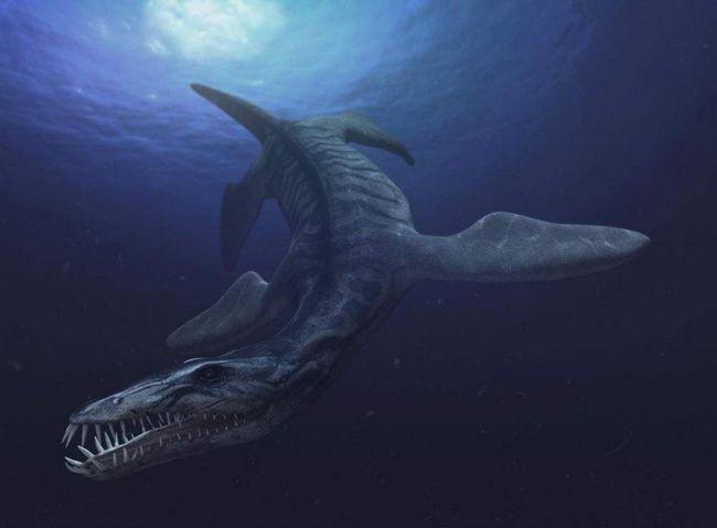 В Ульяновську відновлять останки морського ящера, який мешкав 65 млн. Років тому.