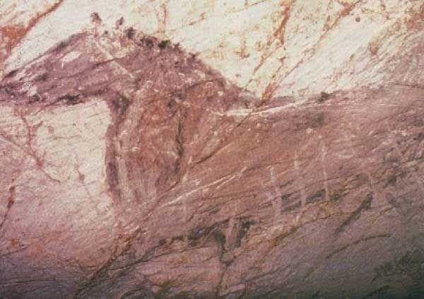 Унікальна підводна печера енрі коскьера