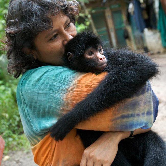 Таня «Нена» Бальтазар обіймає павукоподібну мавпу на прізвисько Мороча.