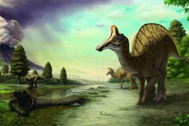 Гадрозавриі мали характерний качиний ніс.