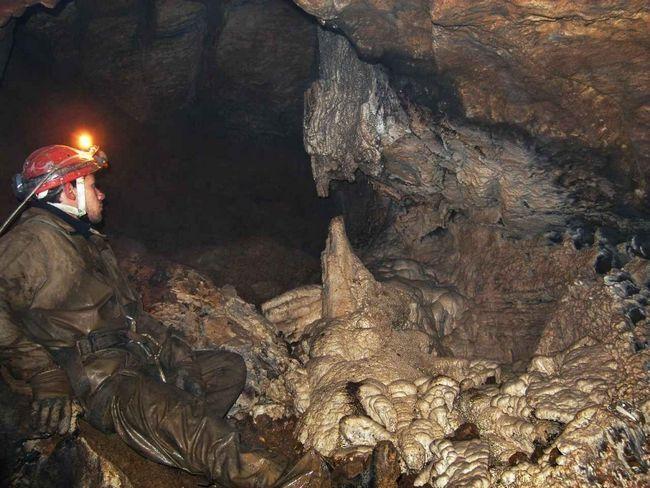У печері Кек-Таш знайдені невідомі види тварин.
