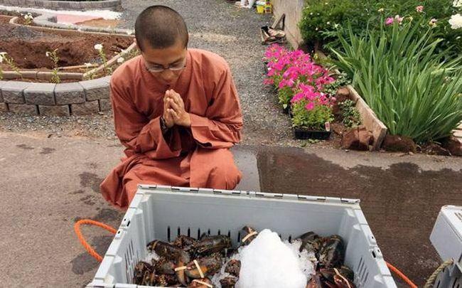 В канаді буддійські ченці випустили на волю 272 кілограми лобстерів