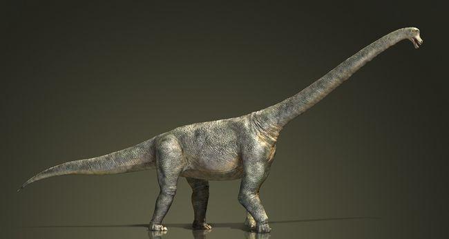 У Монголії знайдено найбільший динозавр.