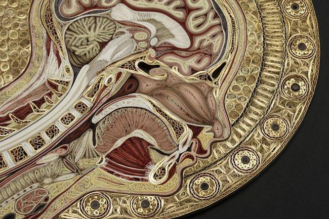 Вінтажна анатомія Лізи Нільссон
